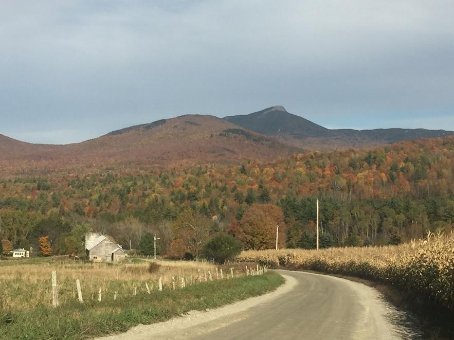 Miles Farm Landscape